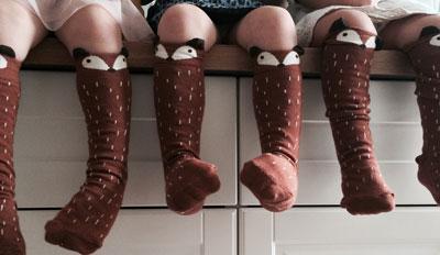 fox-socks-group