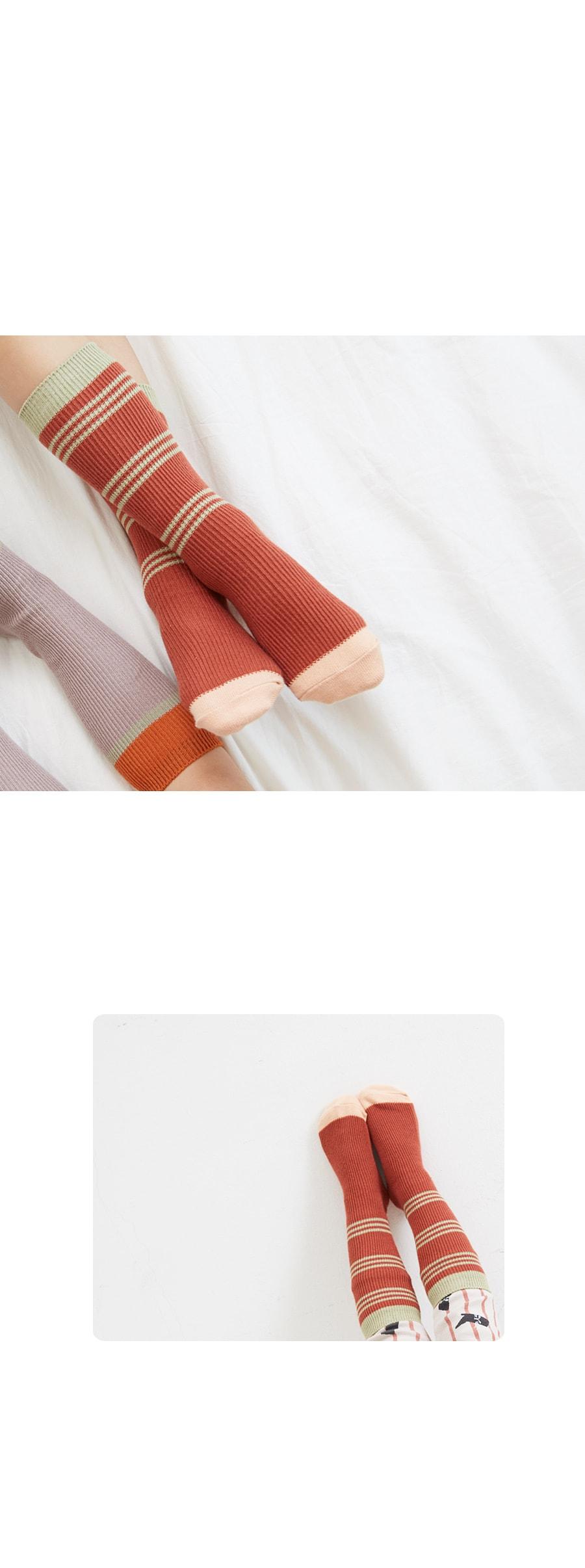 KOKACHARM - Korean Children Fashion - #Kfashion4kids - Red Panda Socks - 2