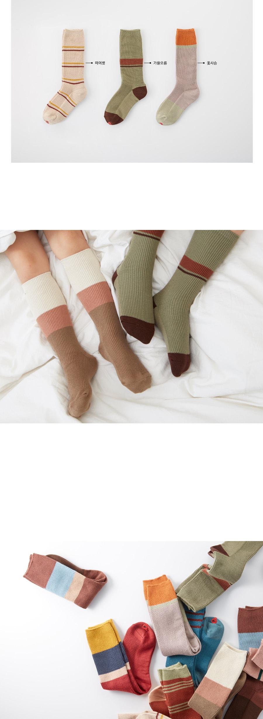 KOKACHARM - Korean Children Fashion - #Kfashion4kids - Autumn Socks - 3
