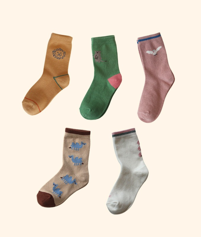 KOKACHARM - BRAND - Korean Children Fashion - #Kfashion4kids - Friend's Home Socks [set of 5]